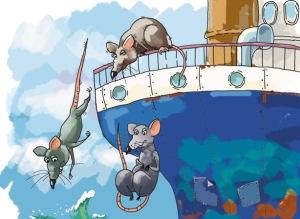 ratas-abandonan-barco